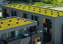 Denver passes new green roof ordinance