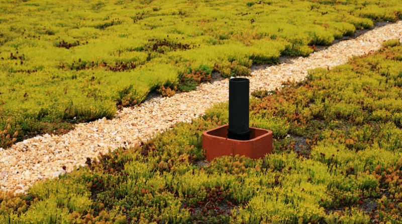 green roof ordinance