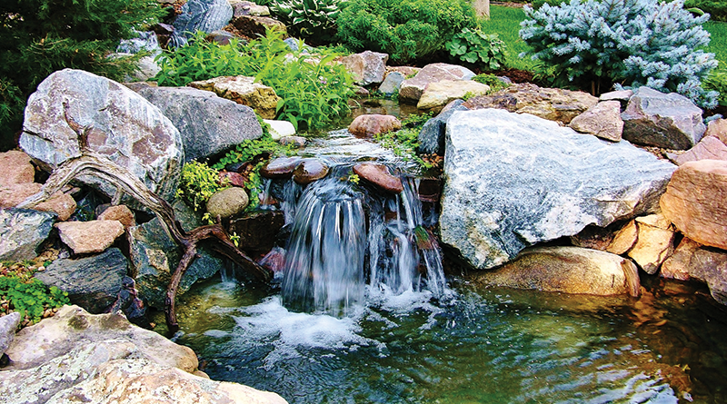 natural pond waterfall